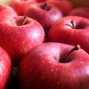 山田さんちの完熟りんご